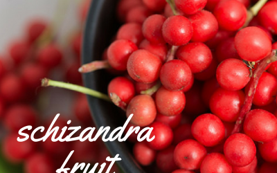 Schizandra fruit, the secret beauty tonic of ancient Chinese royalty